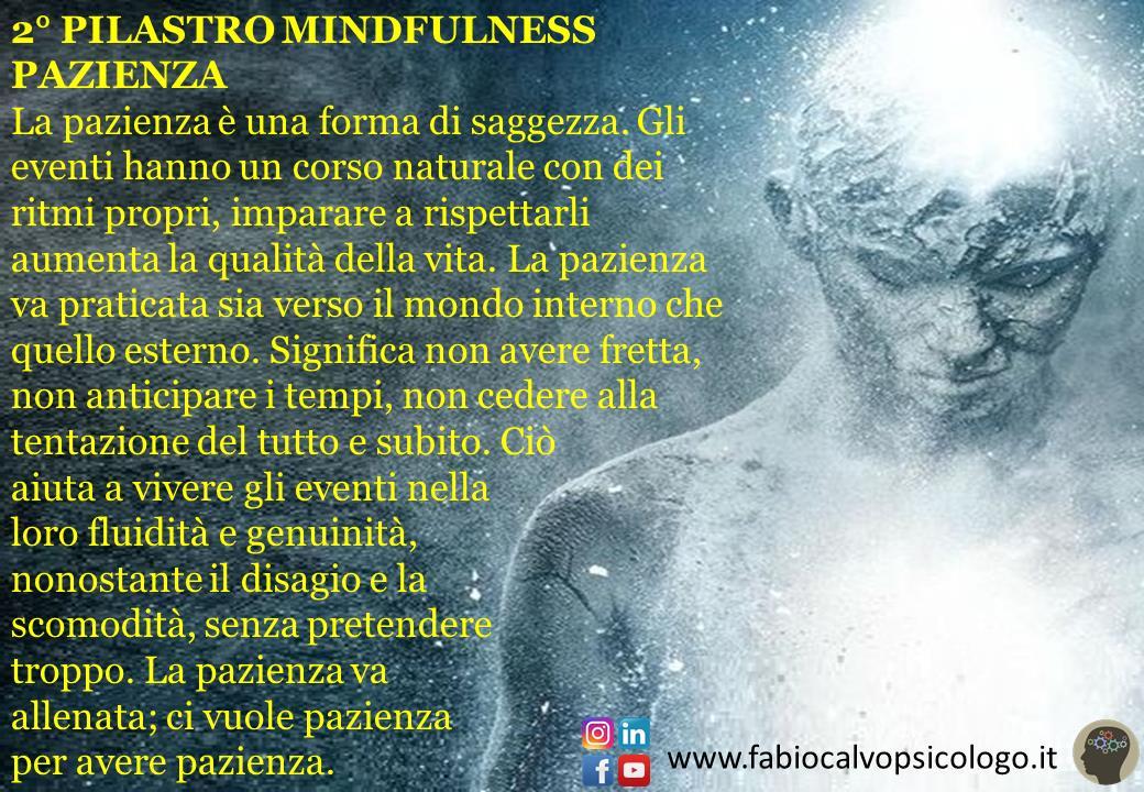 2° Pilastro Mindfulness: PAZIENZA