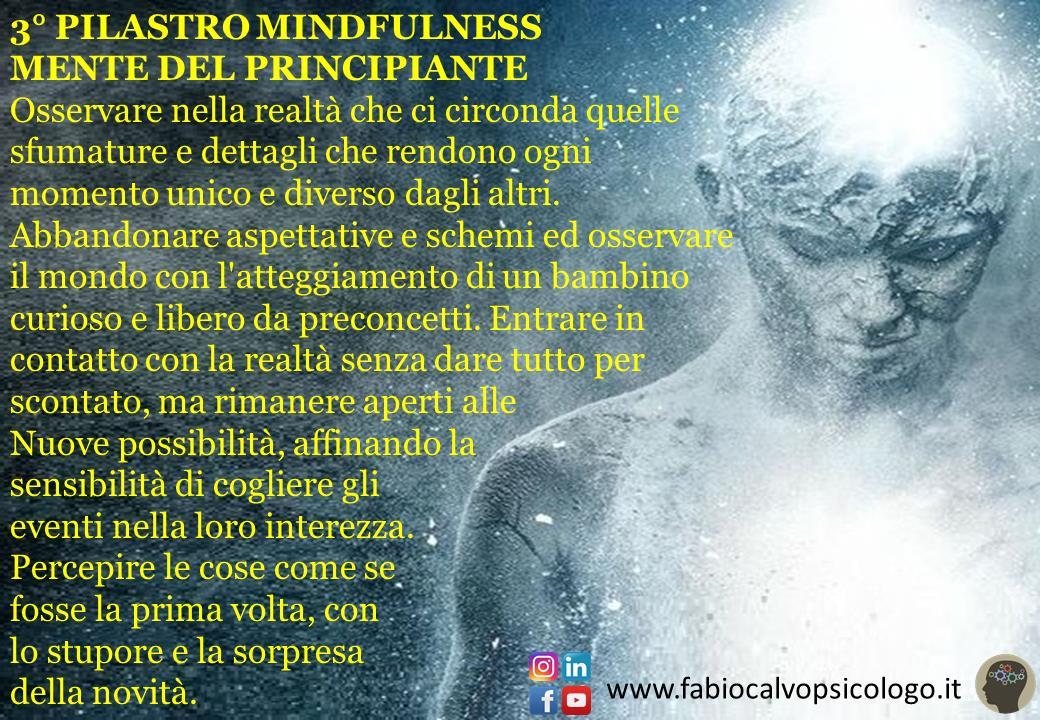 3° Pilastro Mindfulness: MENTE DEL PRINCIPIANTE